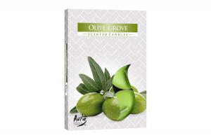 Lumanari parfumate pastila 4h (6buc.) Arbore de Maslin (Olive Grove)