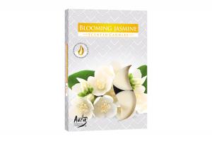 Lumanari parfumate pastila 4h (6buc.) Muguri de Iasomie (Blooming Jasmine)